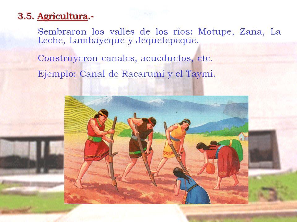 3.5. Agricultura.- Sembraron los valles de los ríos: Motupe, Zaña, La Leche, Lambayeque y Jequetepeque.
