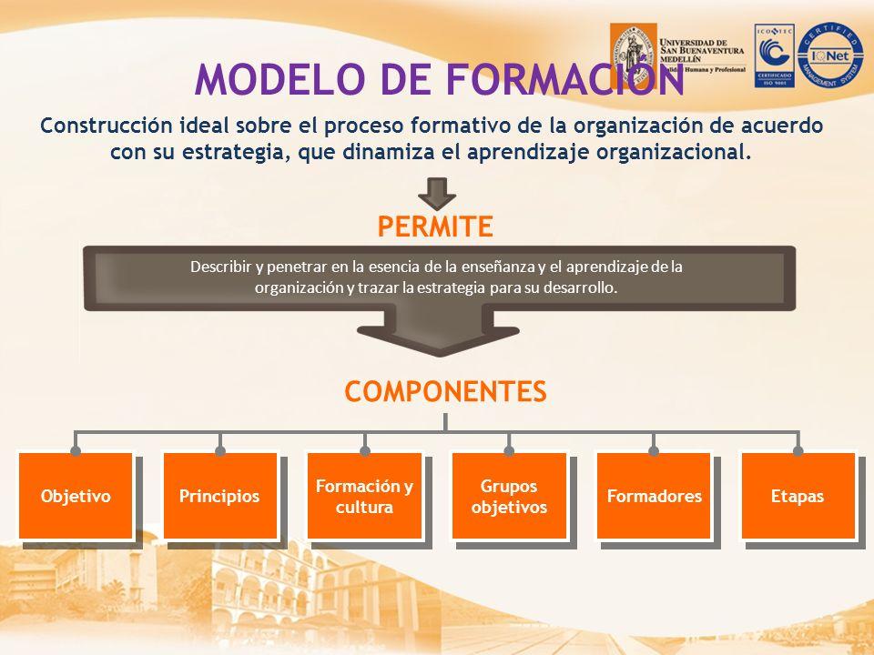 organización y trazar la estrategia para su desarrollo.