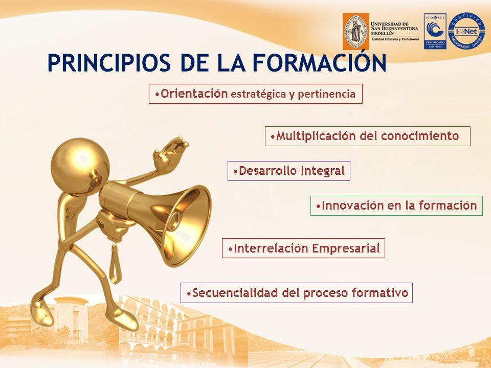PRINCIPIOS DE LA FORMACIÓN