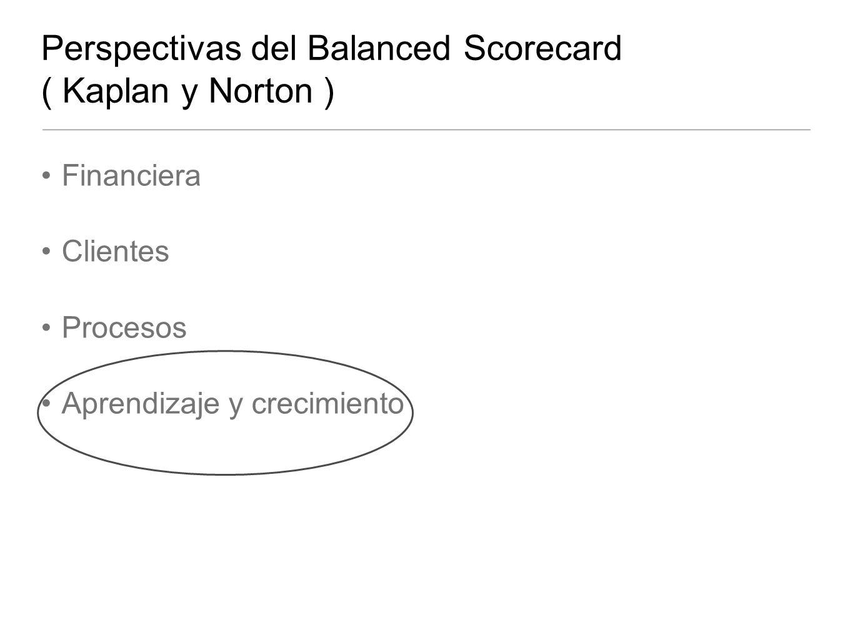 Perspectivas del Balanced Scorecard ( Kaplan y Norton )