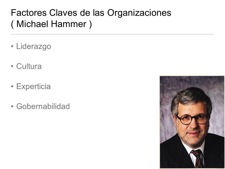 Factores Claves de las Organizaciones ( Michael Hammer )