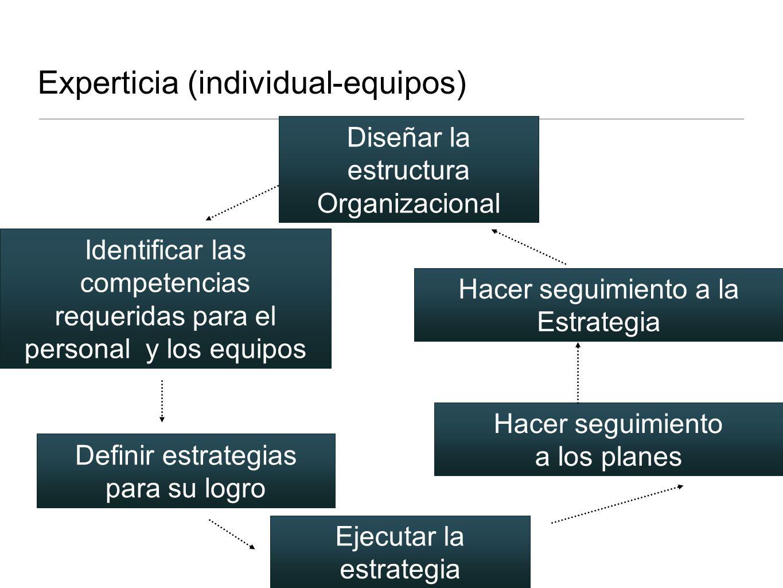 Experticia (individual-equipos)