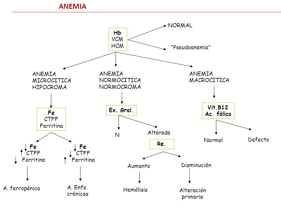 ANEMIA Hb VCM HCM NORMAL Pseudoanemia MICROCITICA HIPOCROMA Fe CTFF