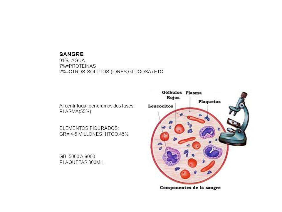 Sangre 91%=AGUA 7%=PROTEINAS 2%=OTROS SOLUTOS (IONES,GLUCOSA) ETC