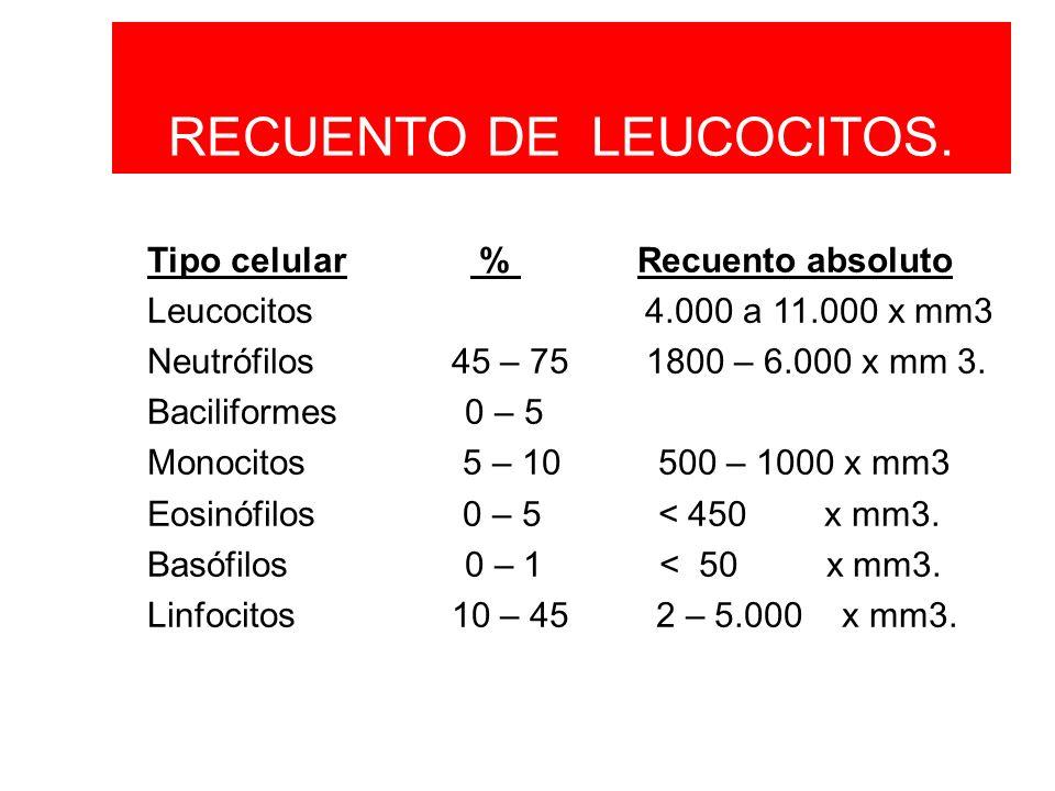 RECUENTO DE LEUCOCITOS.