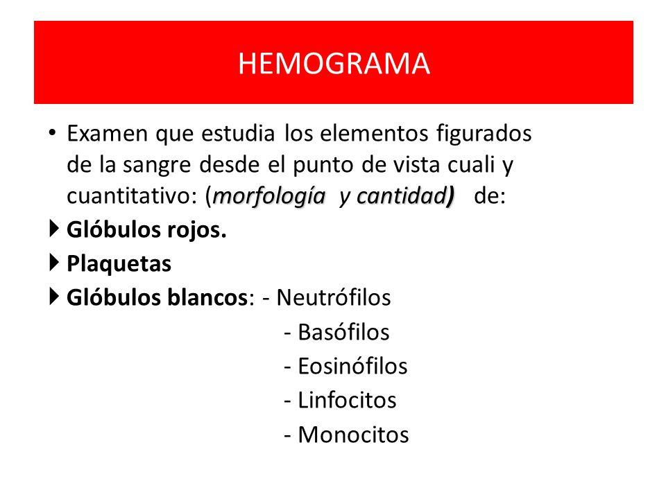 HEMOGRAMA Examen que estudia los elementos figurados de la sangre desde el punto de vista cuali y cuantitativo: (morfología y cantidad) de: