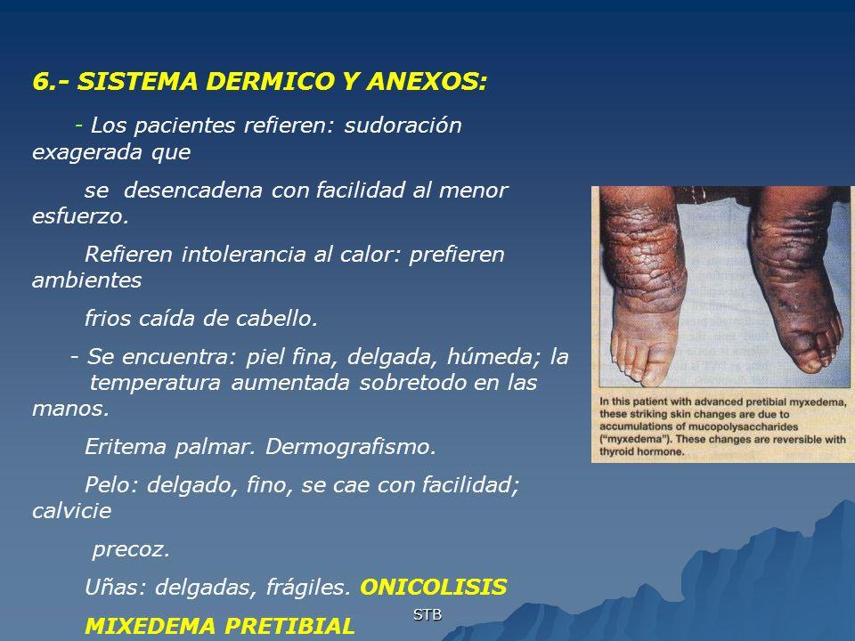 6.- SISTEMA DERMICO Y ANEXOS: