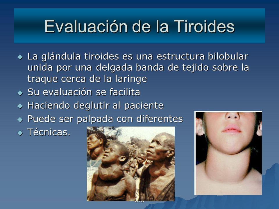 Evaluación de la Tiroides