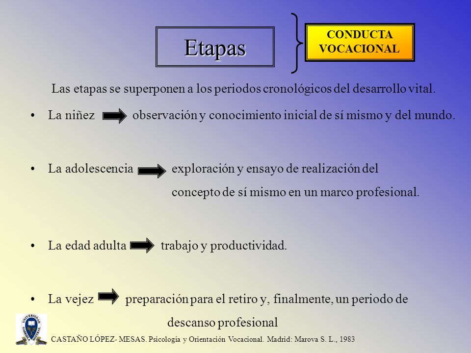 Etapas CONDUCTA VOCACIONAL. Las etapas se superponen a los periodos cronológicos del desarrollo vital.