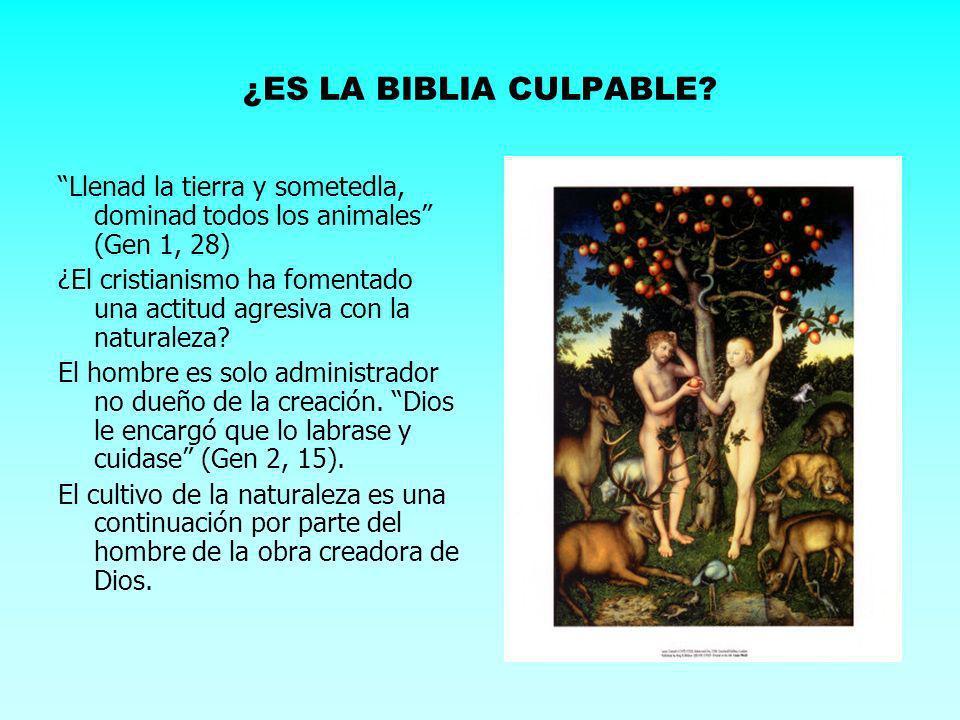 ¿ES LA BIBLIA CULPABLE Llenad la tierra y sometedla, dominad todos los animales (Gen 1, 28)