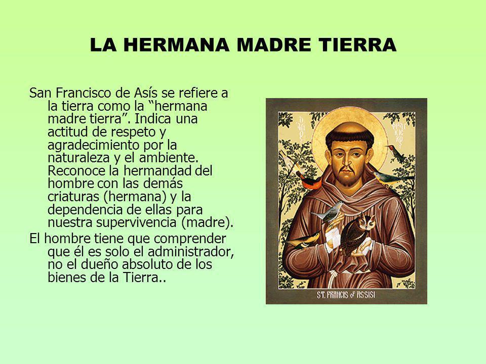 LA HERMANA MADRE TIERRA
