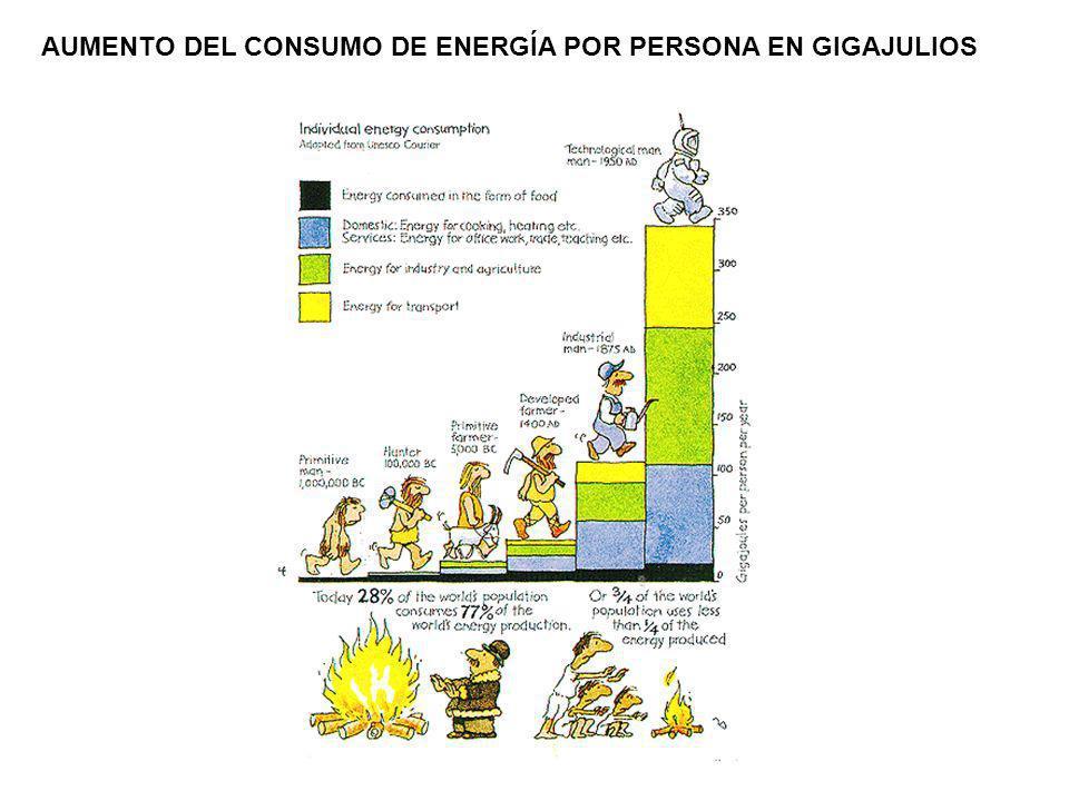 AUMENTO DEL CONSUMO DE ENERGÍA POR PERSONA EN GIGAJULIOS
