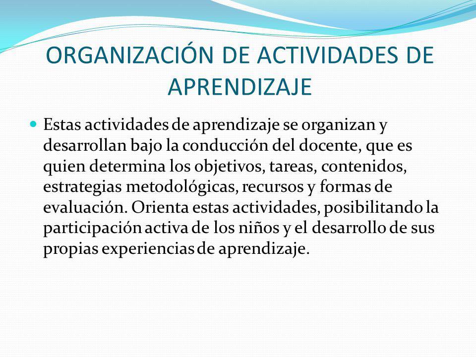ORGANIZACIÓN DE ACTIVIDADES DE APRENDIZAJE