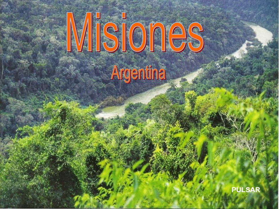 Misiones Argentina PULSAR