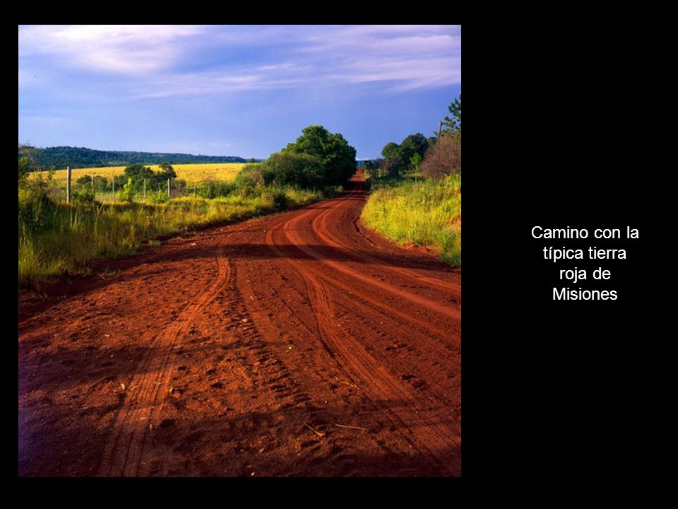 Camino con la típica tierra roja de Misiones