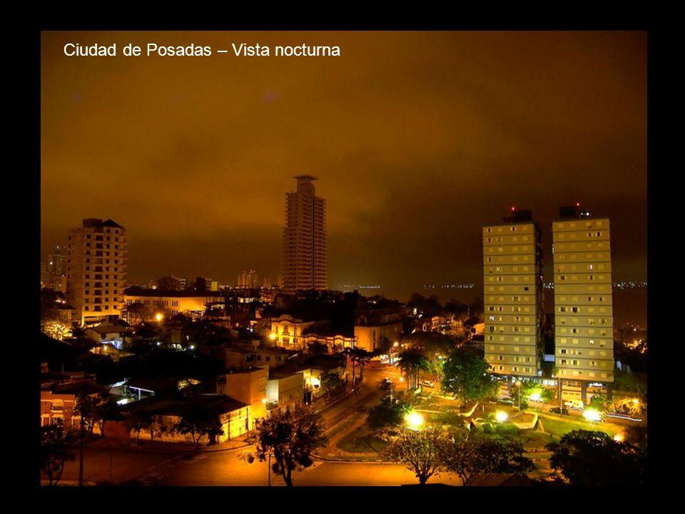 Ciudad de Posadas – Vista nocturna
