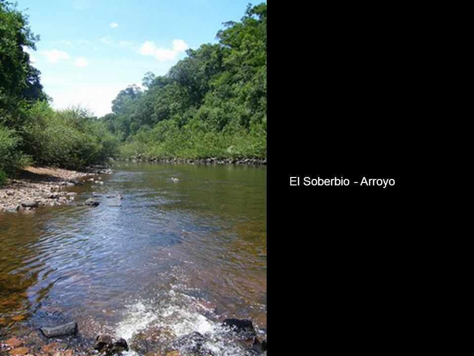 El Soberbio - Arroyo