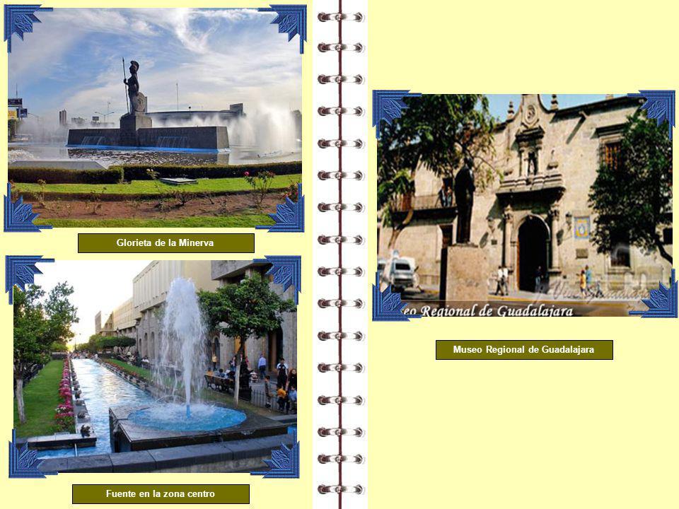 Museo Regional de Guadalajara Fuente en la zona centro