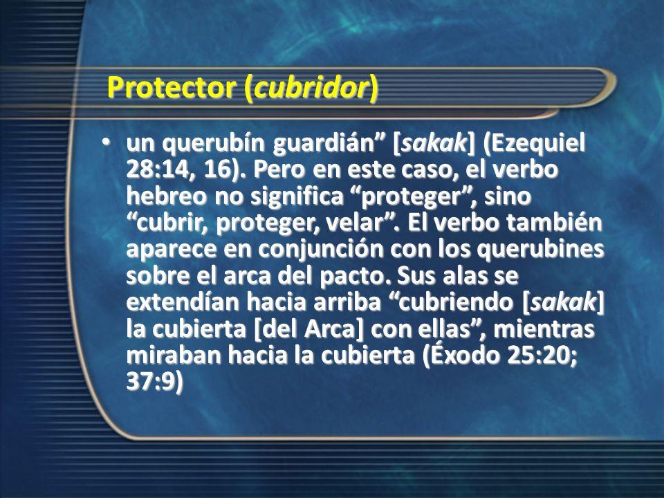 Protector (cubridor)