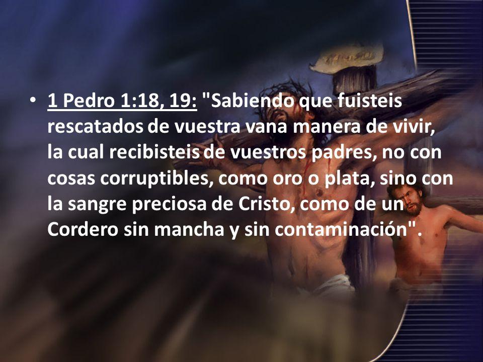 1 Pedro 1:18, 19: Sabiendo que fuisteis rescatados de vuestra vana manera de vivir, la cual recibisteis de vuestros padres, no con cosas corruptibles, como oro o plata, sino con la sangre preciosa de Cristo, como de un Cordero sin mancha y sin contaminación .