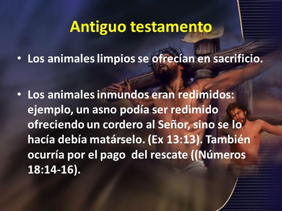 Antiguo testamento Los animales limpios se ofrecían en sacrificio.