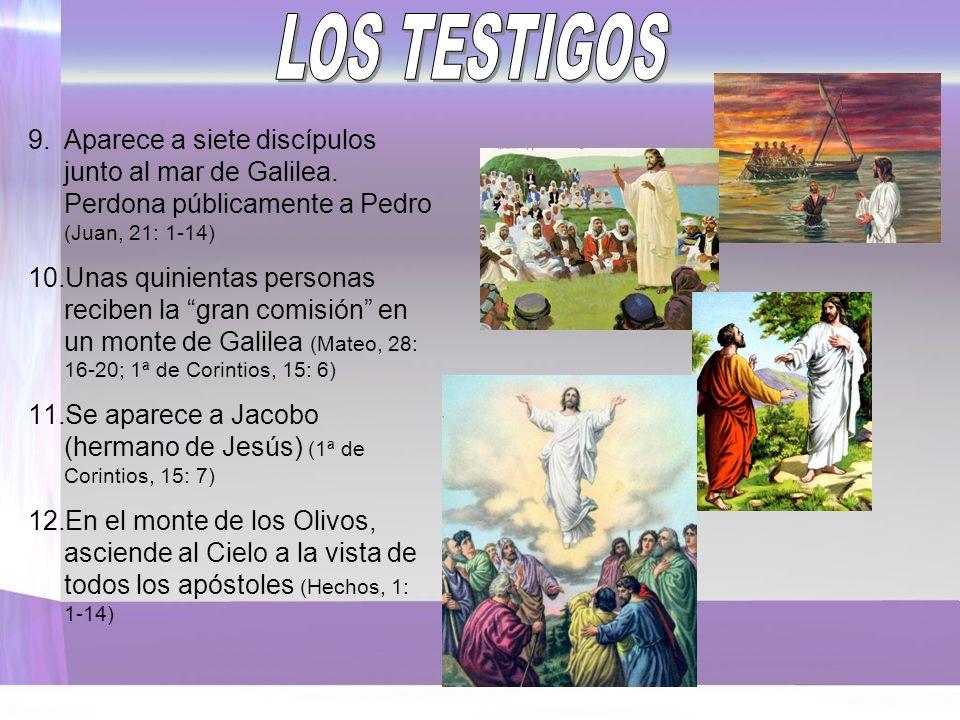 LOS TESTIGOS Aparece a siete discípulos junto al mar de Galilea. Perdona públicamente a Pedro (Juan, 21: 1-14)