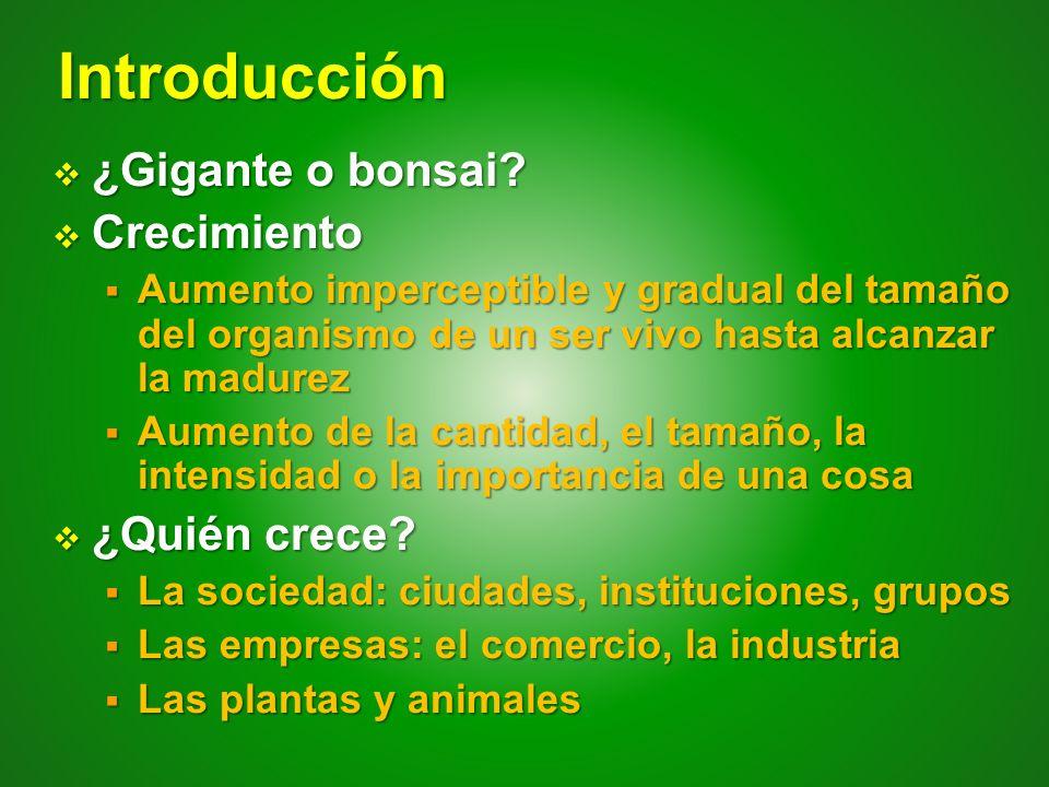 Introducción ¿Gigante o bonsai Crecimiento ¿Quién crece