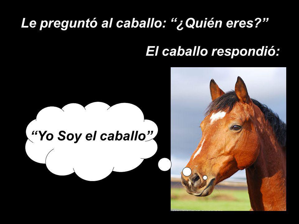Le preguntó al caballo: ¿Quién eres