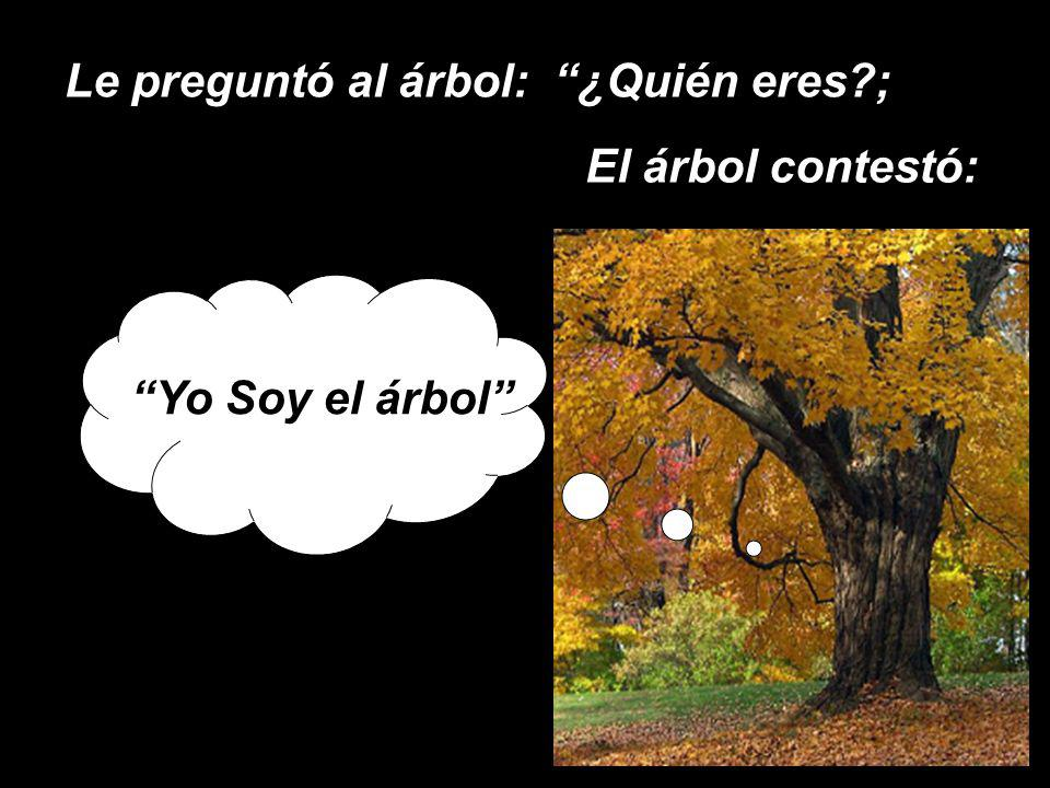 Le preguntó al árbol: ¿Quién eres ;
