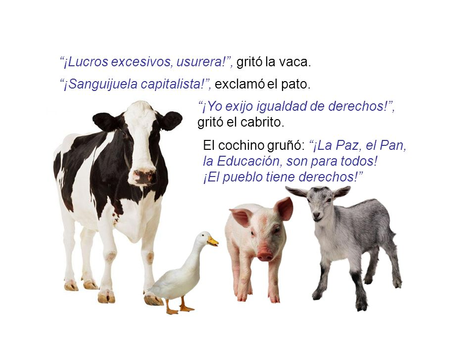 ¡Lucros excesivos, usurera! , gritó la vaca.