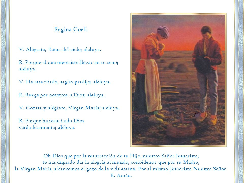 Regina Coeli V. Alégrate, Reina del cielo; aleluya.