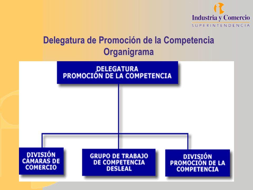 Delegatura de Promoción de la Competencia