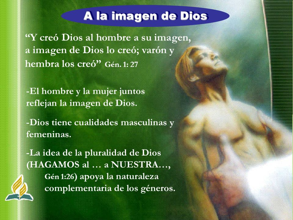 A la imagen de Dios Y creó Dios al hombre a su imagen,
