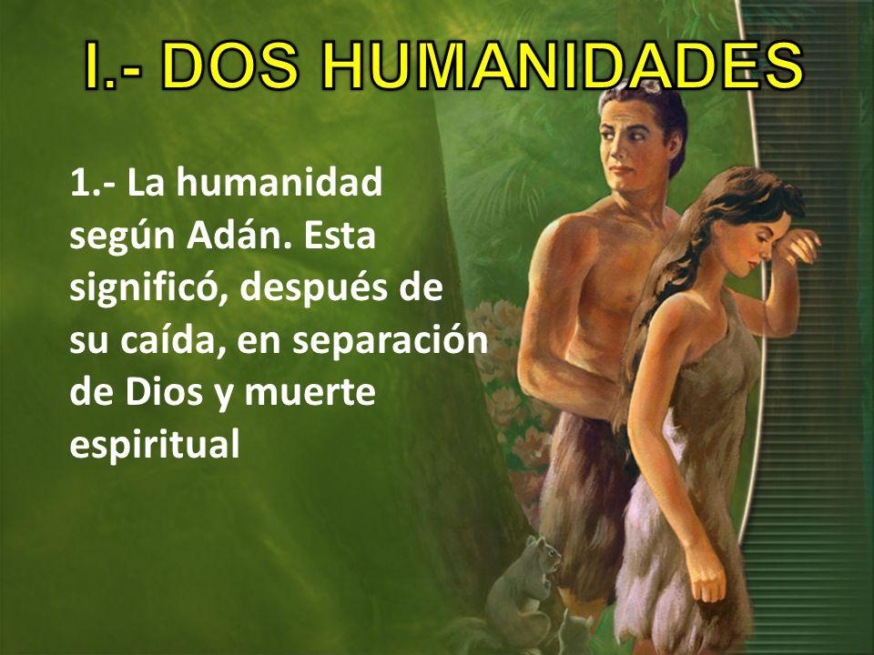 I.- DOS HUMANIDADES1.- La humanidad según Adán.