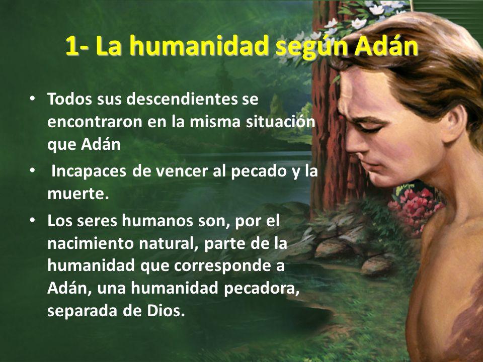 1- La humanidad según Adán