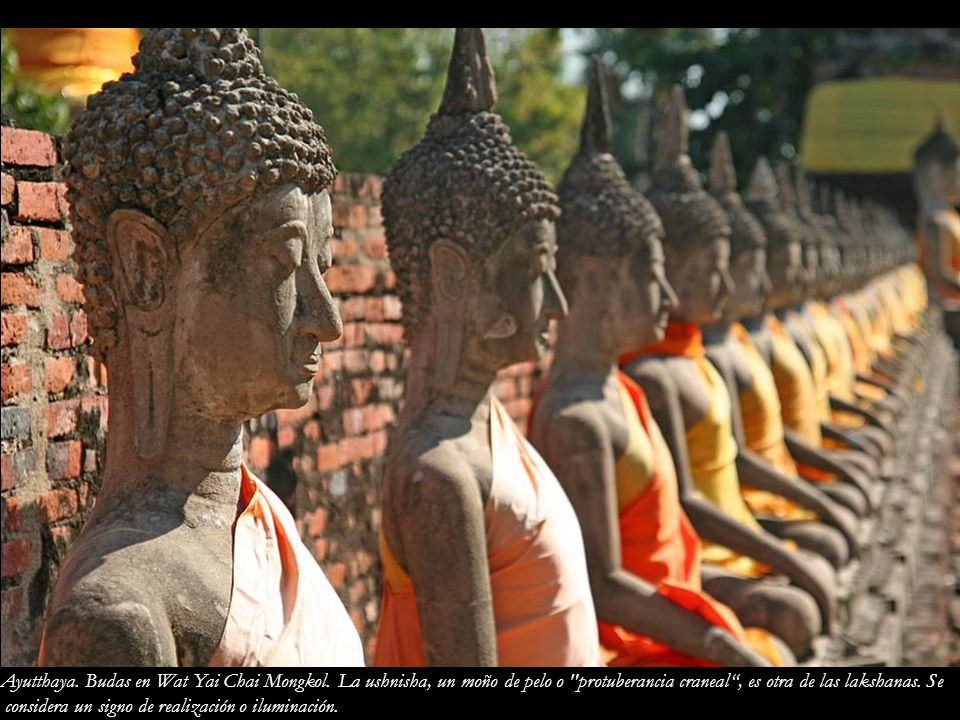 Ayutthaya. Budas en Wat Yai Chai Mongkol
