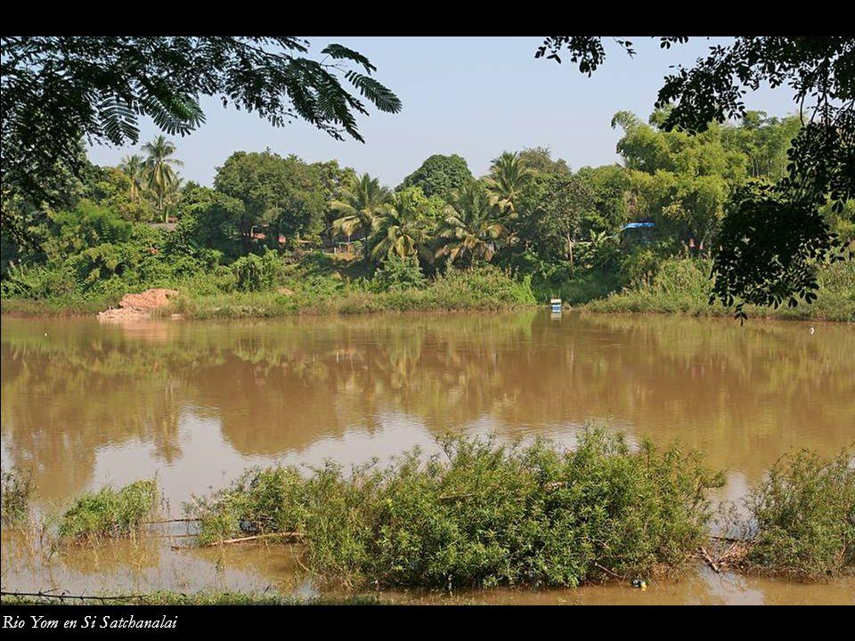 Rio Yom en Si Satchanalai