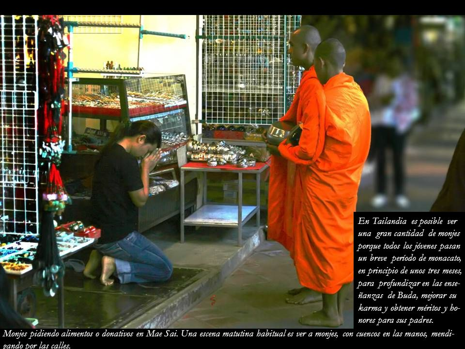 En Tailandia es posible ver