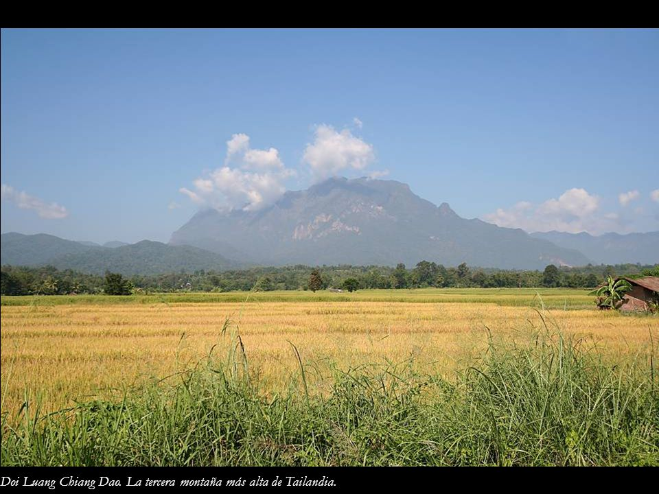 Doi Luang Chiang Dao. La tercera montaña más alta de Tailandia.