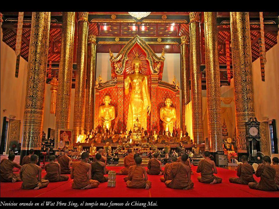 Novicios orando en el Wat Phra Sing, el templo más famoso de Chiang Mai.