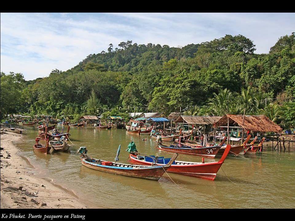 Ko Phuket. Puerto pesquero en Patong