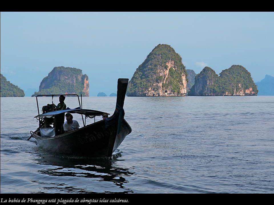 La bahía de Phangnga está plagada de abruptas islas calcáreas.