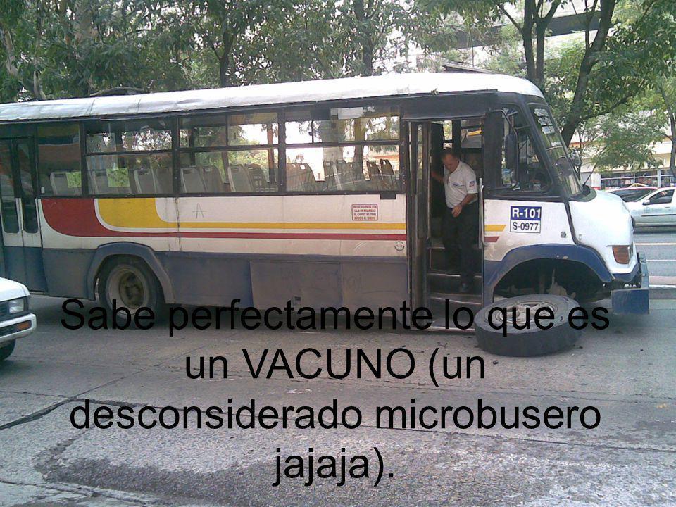 Sabe perfectamente lo que es un VACUNO (un desconsiderado microbusero jajaja).