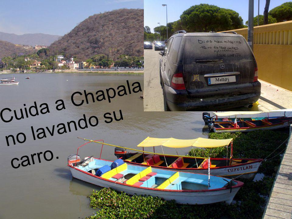 Cuida a Chapala no lavando su carro.