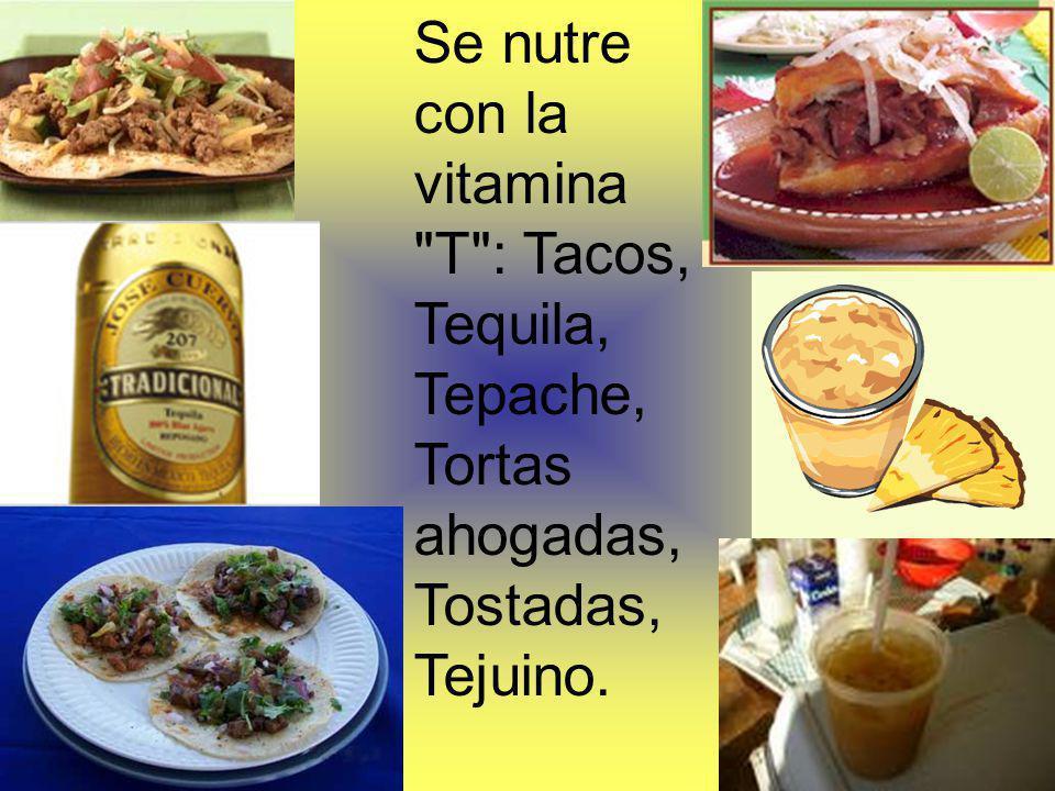 Se nutre con la vitamina T : Tacos, Tequila, Tepache, Tortas ahogadas, Tostadas, Tejuino.