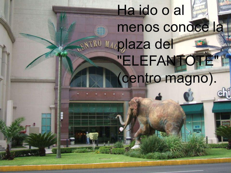 Ha ido o al menos conoce la plaza del ELEFANTOTE (centro magno).