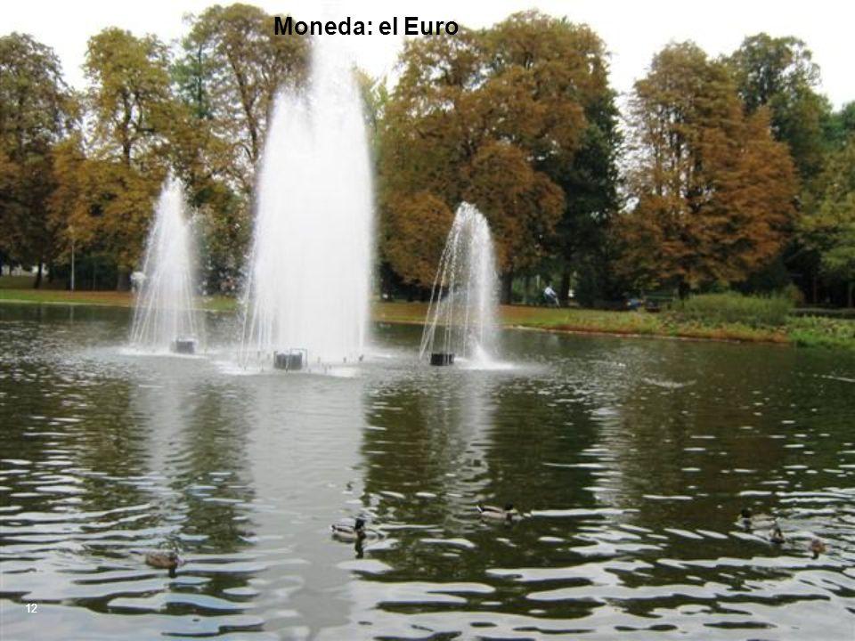 Moneda: el Euro 12
