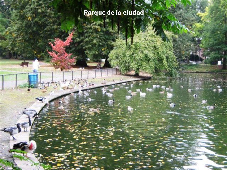 Parque de la ciudad 24