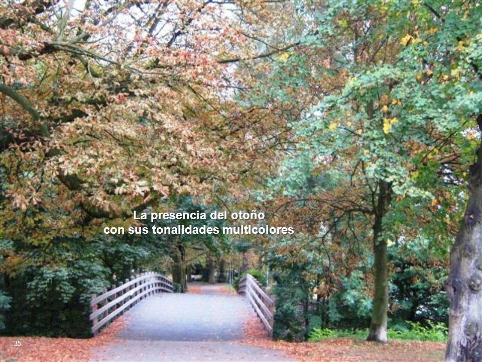 La presencia del otoño con sus tonalidades multicolores