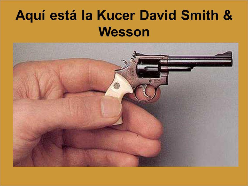 Aquí está la Kucer David Smith & Wesson